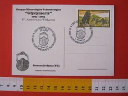 A.09 ITALIA ANNULLO - 2004 SERRAVALLE SESIA VERCELLI 10 ANNI GRUPPO GLYCIMERIS PALEO FOSSILI MINERALI CONCHIGLIA SHELL - Francobolli