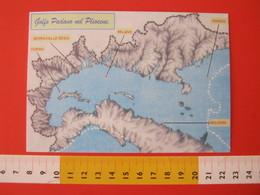 A.09 ITALIA ANNULLO - 2004 SERRAVALLE SESIA VERCELLI 10 ANNI GRUPPO GLYCIMERIS PALEO FOSSILI MINERALI CONCHIGLIA SHELL - Carte Geografiche