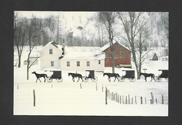 PENNSYLVANIA - AMISH COUNTRY - THE CHIEF SOURCE OF TRANSPORTATION FOR  ANISH REMAINS THE HORSE AND BUGGY BY JERRY IRWIN - Other