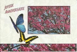 CARTE POSTALE - GUYANE - La Faune - Papillons - Morpho Ménélaus / Papilio Thaos - Editions PLUME VERTE - Papillons