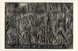 Egypt, SAKKARA SAQQARA, Tomb Of Mereruka (1930s) Lehnert & Landrock RPPC - Museum