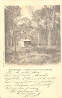 Arcachon - Forêt, Habitation Du Résinier - Arcachon