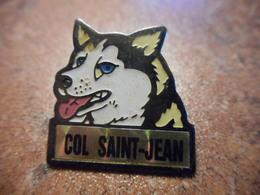 A027 -- Pin's Col Saint Jean -- Exclusif Sur Delcampe - Villes