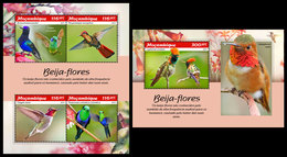 MOZAMBIQUE 2019 - Hummingbirds. M/S + S/S. Official Issue - Oiseaux