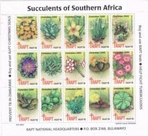 Viñetas, Label, RAPT Succulents Southern Africa ZIMBABWE 2000, Cactus, Vegetal, Tuberculosis - Zimbabwe (1980-...)