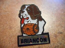 A027 -- Pin's Briancon -- Exclusif Sur Delcampe - Villes