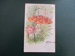 CPA FANTAISIE BONNE ET HEUREUSE ANNEE 1905 CHAMPIGNONS - Nouvel An