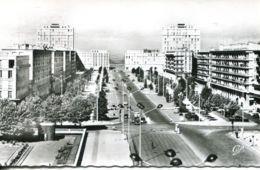 N°70096 -cpsm Le Havre -l'avenue Foch- - Le Havre