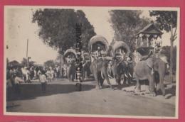 ASIE---CAMBODGE--PHNOM-PENH--Elephants En Promenade--(sans Legende) Cpsm Pf - Cambodia