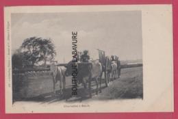 ASIE---CAMBODGE--Charrettes A Boeufs---animé--precurseur - Cambodia