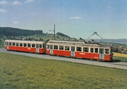 Tram/Strassenbahn Forchbahn, Ungelaufen - Tramways