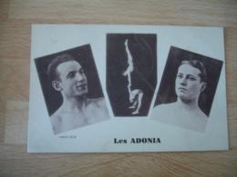 Cirque Les Adonia Acrobate - Cirque