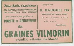 BUVARDS - AGRICULTURE - CULTURES - Buvard GRAINES VILMORIN - Grainetier H. HAUGUEL FILS à FÉCAMP - Agriculture