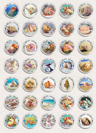 35 X Seashells Sea Shells ART BADGE BUTTON PIN SET 3 (1inch/25mm Diameter) - Animaux