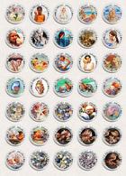 35 X Seashells Sea Shells ART BADGE BUTTON PIN SET 4 (1inch/25mm Diameter) - Animaux