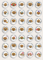 35 X Seashells Sea Shells ART BADGE BUTTON PIN SET 5 (1inch/25mm Diameter) - Animaux