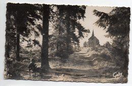 MORTAIN --1957---Sous-bois Et La Petite Chapelle Saint Michel  (petite Animation)  -- Timbre --cachet -- - Altri Comuni
