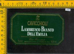 Etichetta Vino Liquore Lambrusco Dell'Emilia Cavicchioli-S. Prospero MO - Altri