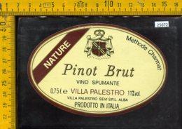 Etichetta Vino Liquore Pinot Brut-Villa Palestro-Alba - Altri