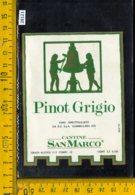 Etichetta Vino Liquore Pinot Grigio San Marco-Gambellara VI - Etichette