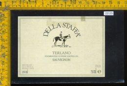 Etichetta Vino Liquore Sauvignon Terlano Della Staffa-Bolzano - Etichette