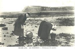76)   LE TREPORT  -  Pêcheuses  De  Moules - Le Treport