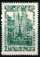 BRAZIL # 870   - BOTANICAL GARDEN OF RIO DE JANEIRO  -  MINT  - 1958 - Brazil