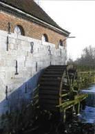 SINT-TRUIDEN ~ Metsteren (Limburg) - Molen/moulin - Mooie Prentkaart Van De Metsterenmolen (foto: 2005) - Sint-Truiden