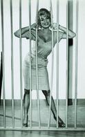 Barbara Nichols PHOTO POSTCARD  FILM STARS -2 - Mujeres Famosas