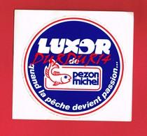 1 Autocollant Sport Pêche PEZON Et MICHEL - Autocollants