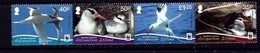 Ascension 1038 NH 2011 Birds Strip Of 4 Been Folded SCV 2017 $8.00 - Ascension