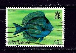 Montserrat 383 Used 1978 Fish - Montserrat