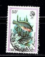 Montserrat 452 Used 1981 Fish - Montserrat