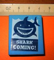 SHARK COMING! GOMMA RUBBER PER CANCELLARE - Altri