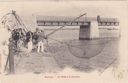 CPA Dept 17 ROYAN La Pêche A La Crevette - Royan