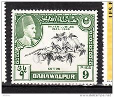 Bahawalpur, Coton, Cotton, Textile - Textile