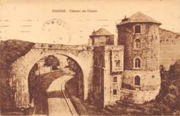 NAMUR - Château Des Comtes - Namen
