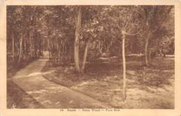 HEYST - Klein Woud - Petit Bois - Heist