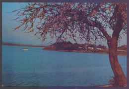 [Beauty-107] PAKISTAN Picture POST CARD - Rawal Dam Rawalpindi, Unused - Pakistan