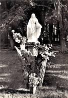 Champdeniers Statue De La Vierge  Foyer Notre Dame De Puyraveau 1970   CPM Ou CPSM - Champdeniers Saint Denis