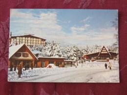 Serbia Unused Postcard Zajecar Street View Under Snow - Serbie