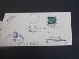 REGNO ITALIA BIGLIETTI CON OVALE DI FRANCHIGIA COMUNALE CURINGA REGIE POSTE 1931 - Franchigia