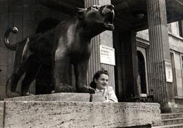 Photo Originale Portrait De Panthère Contre Panthère Statue Vers 1940 - Pin-up
