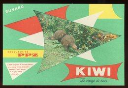 BUVARD:  CIRAGE KIWI - PPZ - FORMAT  12X18 Cm - Chaussures