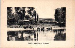 ASIE - ISRAEL -- Beith Saida - Israel