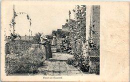ASIE - ISRAEL -- Fleurs De Nazareth - Israel