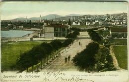 GREECE - SOUVENIR DE SALONIQUE - UNE RUE VENANT DES CAMPAGNES A SALONIQUE - ALBERT NISSIM EDITEUR - 1900s (BG2511) - Grèce