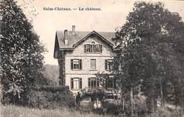 Salm-Château - Le Château (chocolaterie Cesar) - Vielsalm