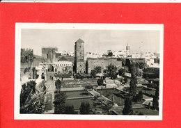 RABAT Cpa Jardin Des Oudaias     321 La Cigogne - Rabat