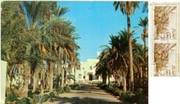 ALGERIE  ALGERIA  TOUGGURT  Entrée De L'Hotel Transatlantique  Nice Stamps - Algeri
